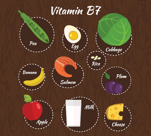 Vitamin B Complex During Pregnancy - Vitamin B7
