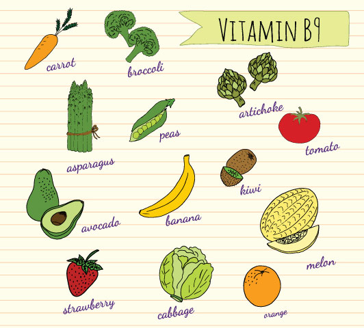 Foods High In Iron Vitamin B And Folate