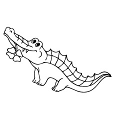 crocodile-with-flower