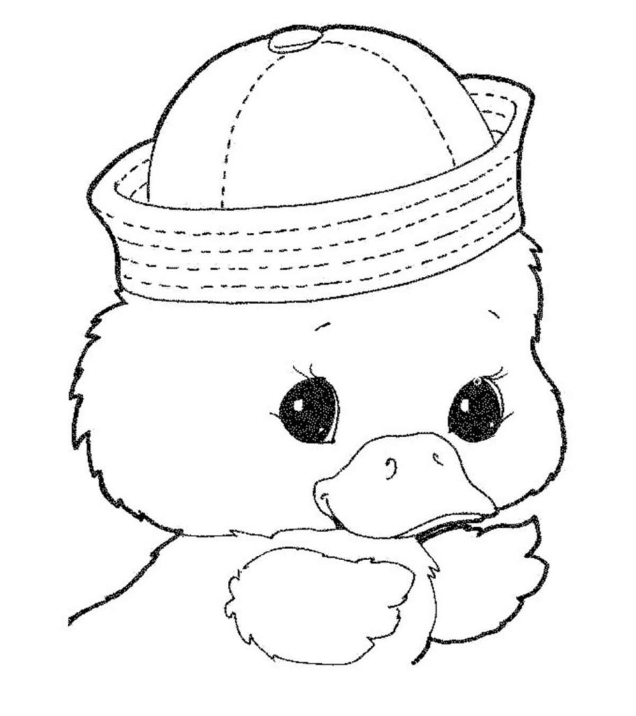 Top 20 Free Printable Duck Coloring