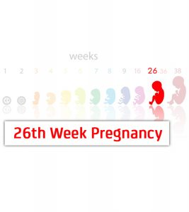 26th Week Pregnancy Symptoms, Baby Development, Tips And Body Changes