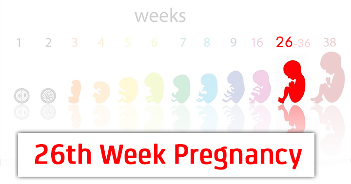 26th Week Pregnancy Symptoms Baby Development Tips And Body Changes
