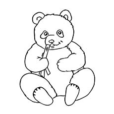 a coloring pages of panda bears - Panda Coloring Page