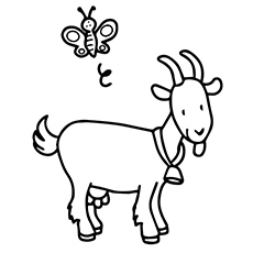 cute goat coloring chevre coloring pages - Coloring Page Goat