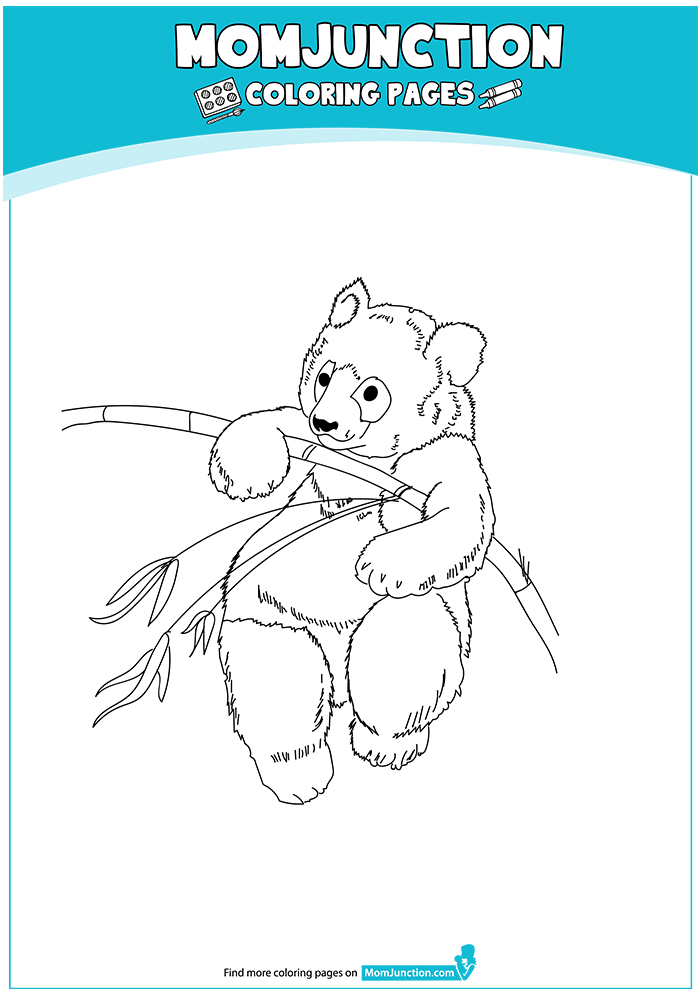 A-Giant-panda-coloring-page-16