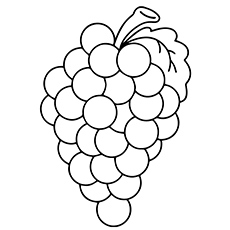 Top 25 Free Printable Lovely Grapes Coloring Pages Online