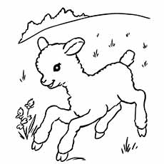 a sheep coloring run - Sheep Coloring Page