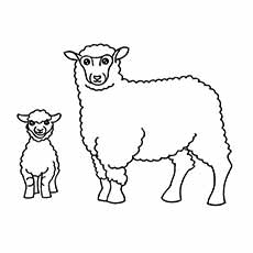 a sheep coloring small - Big And Small Coloring Pages