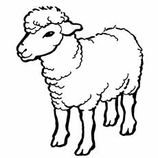 a sheep a coloring big - Sheep Coloring Page