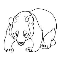 A-cute-panda-bear-coloring