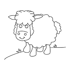 A-sheep-coloring-planse-16