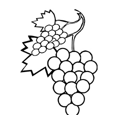 A-sweet-grapes-coloring-pages