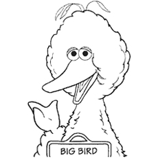 Big-Bird-talking