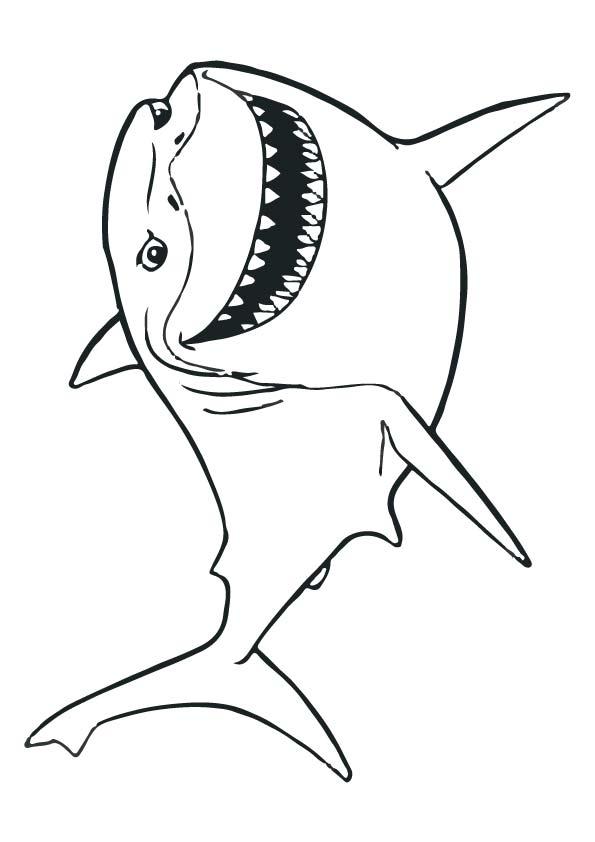 Disney-Bruce-fish