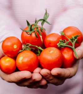 Is-It-Safe-To-Eat-Tomatoes-During-Pregnancy