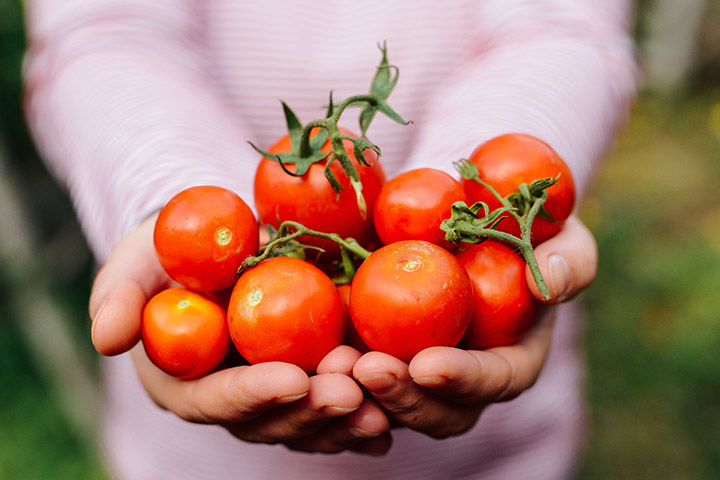 Is It Safe To Eat Tomatoes During Pregnancy