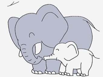 Top 10 Jungle Animals Coloring Pages For Your Naughty Kid