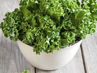 5 Nutritional Benefits Of Kale During Pregnancy