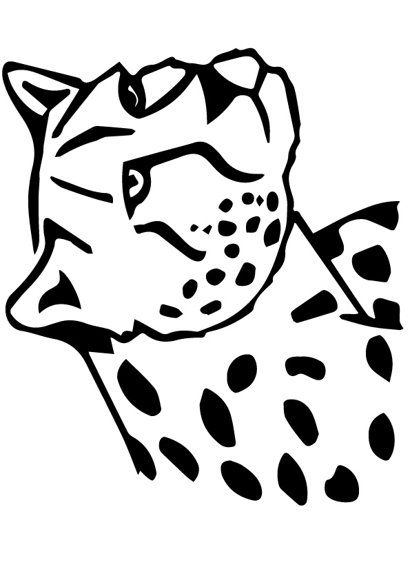 Leopardtoprint