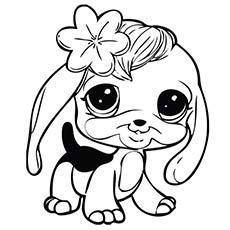 littlest pet shop nevla coloring page - Littlest Pet Shop Coloring Page