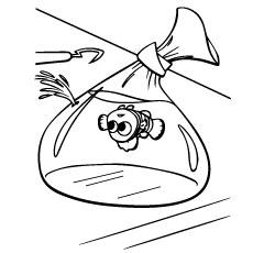 Nemo-traped-in-Plastic-Bag