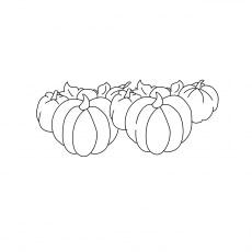 Pumpkins Big
