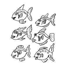 Six-fishes