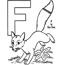 The-'F'-For-Fox