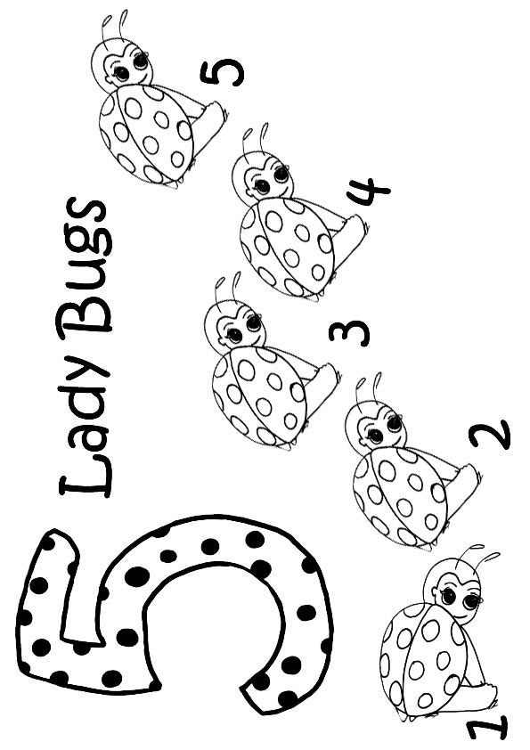 The-5-Ladybugs