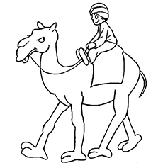 The Arabic Man Riding Camel