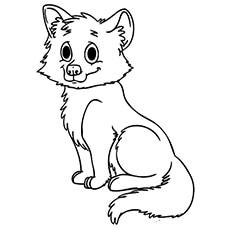 the baby fox