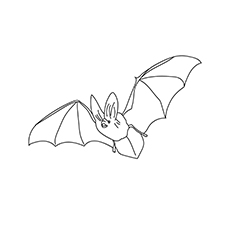 The Big Eared Bat1 Coloring pages