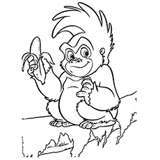 chimp with banana in hand coloring page