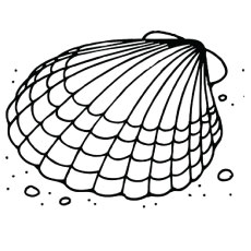 the clam shell on the beach - Seashell Coloring Pages Printable