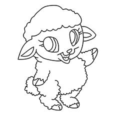 The-Cute-Sheep-16