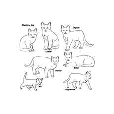 The Different Types Of Warrior Cats