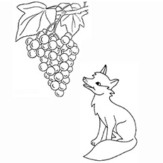 the fox and the grapes - Fox Coloring Book