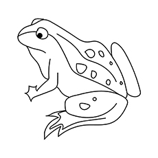 The-Frog1-16 coloring pages
