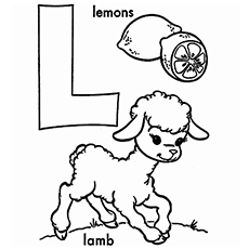The Lamb And Lemons