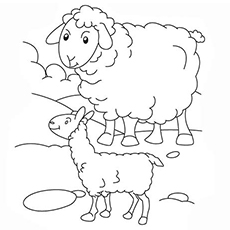 The-Mamma-and-Baby-Sheep-coloring