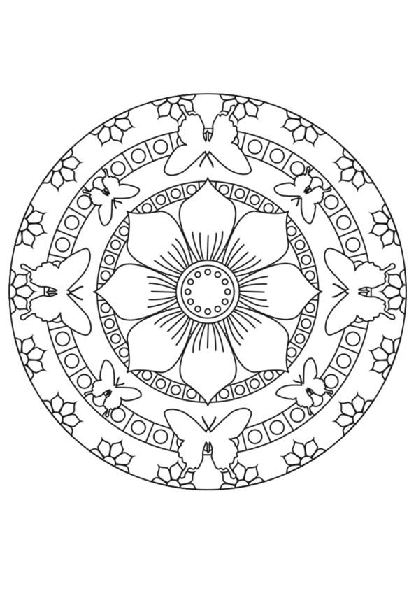 The-Multiple-Flower-Design-color