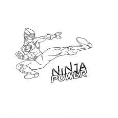 The-Ninja-Poster