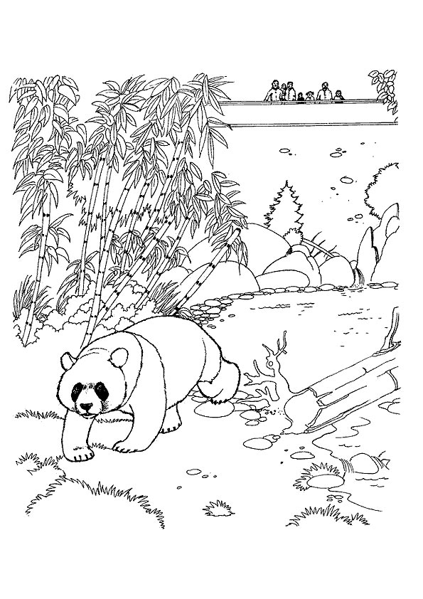 The-Panda-Reaching-Out-color-to-print