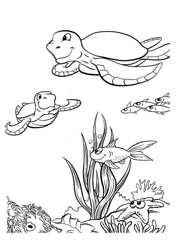 The-Sea-Turtles-With-Fishes