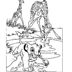 Coloring Sheet of Simba and the Giraffes
