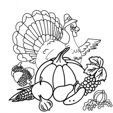 the turkey with vegetables