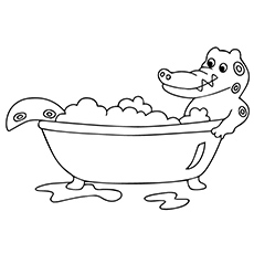 The-alligator-in-tub