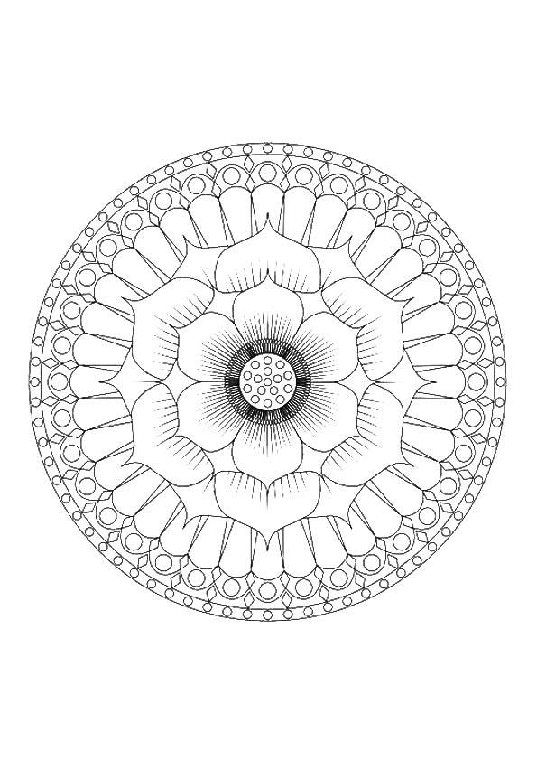 The-beautiful-lotus-petal-design