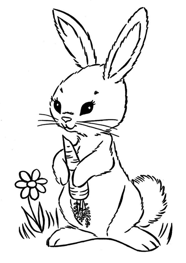 The-easter-bunny-with-carrot