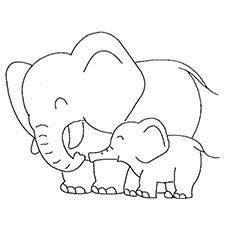 The Elephant And Its Cute Baby